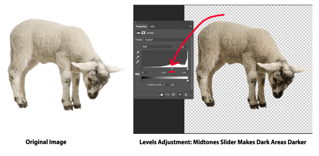 Adjusting Levels in Photoshop