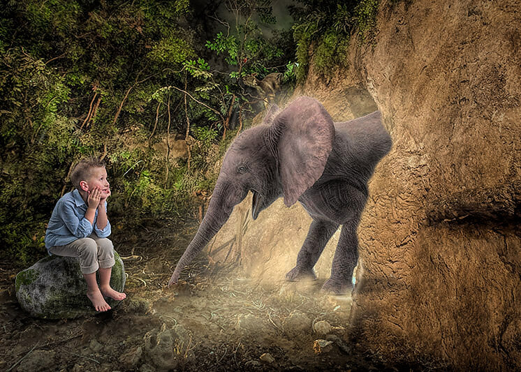 Photoshop image of boy sitting on rock in forest looking at elephant