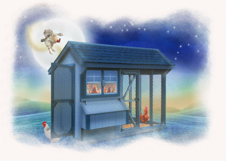 Children's Book Illustration Chicken Coop at Night